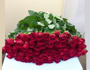 赤いバラ99本の花束