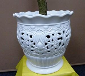 【観葉植物】透かし彫りの器と小葉のガジュマルパンダ02