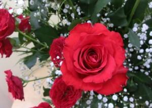 【アレンジメント】歌と共に40年、バラでお祝いを。02